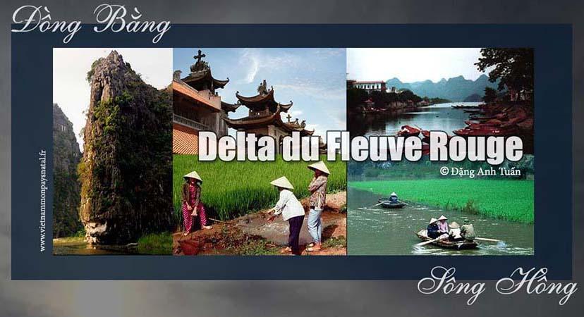 delta_rouge