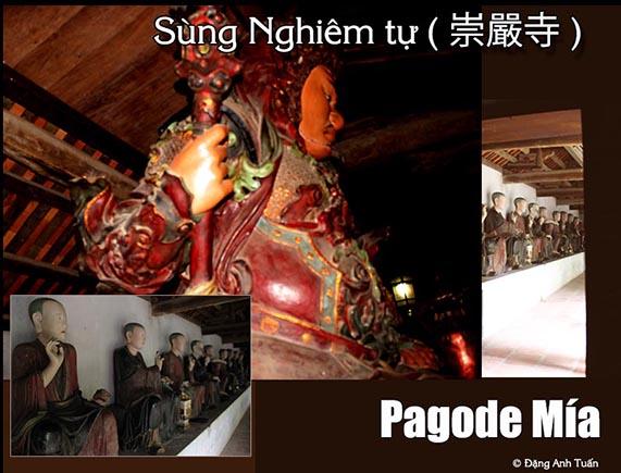 pagode_mia