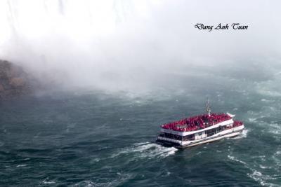 Niagara 1364