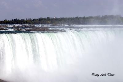 Niagara 1365