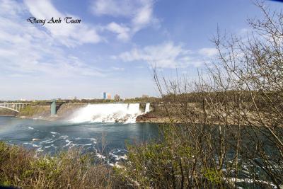 Niagara 1390