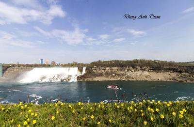 Niagara 1394