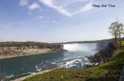 Niagara 1398