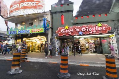 Niagara 1417