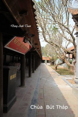 pagode 1071