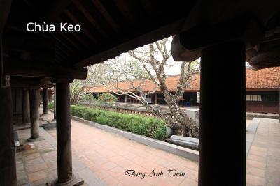 pagode 9957